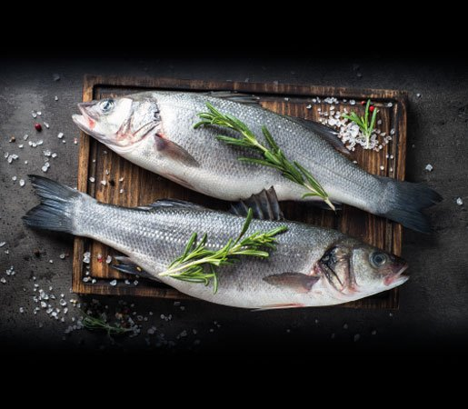 Frisch-Fisch aus unserer Feinkost-Metzgerei